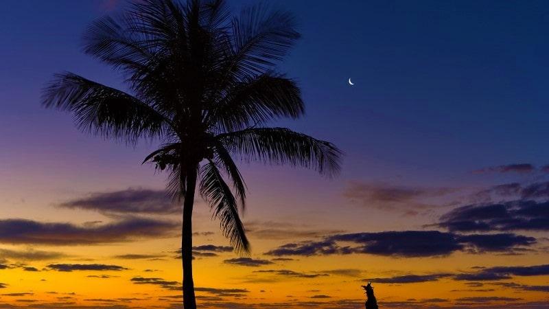 Florida Keys Boca Chita