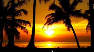 Florida Keys charters