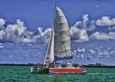 50 Sailing party catamaran sailing in Miami