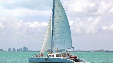 55 Sailing party catamaran
