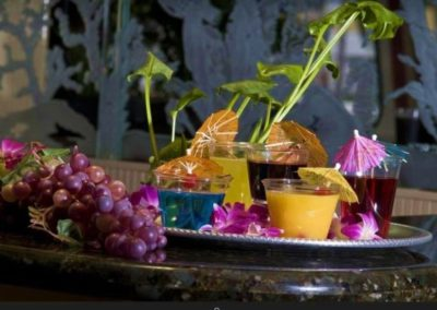 170 Swiftship party yacht custom drinks arrangement